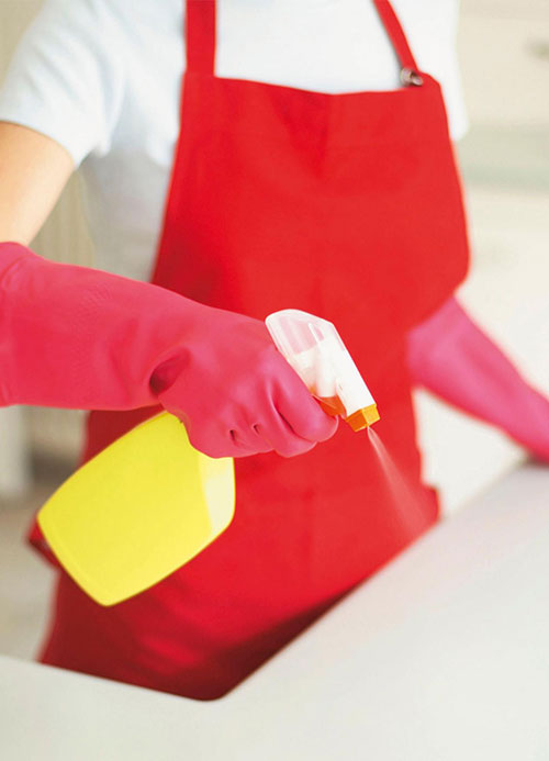 Long Island recurring cleaning Services